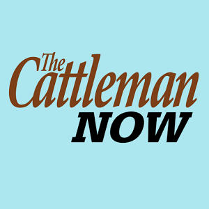 The Cattleman Now