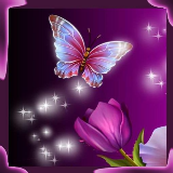 Butterfly 3D Magic Wallpaper