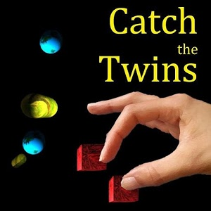 Catch the Twins
