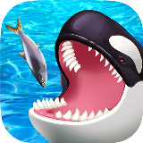 Feed The Killer Whale 3D