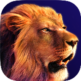 Savannah Lion 3D