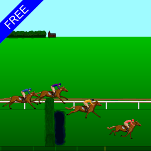 Steeplechase Horse Racing